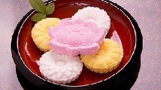 Bánh Wagashi -Higashi